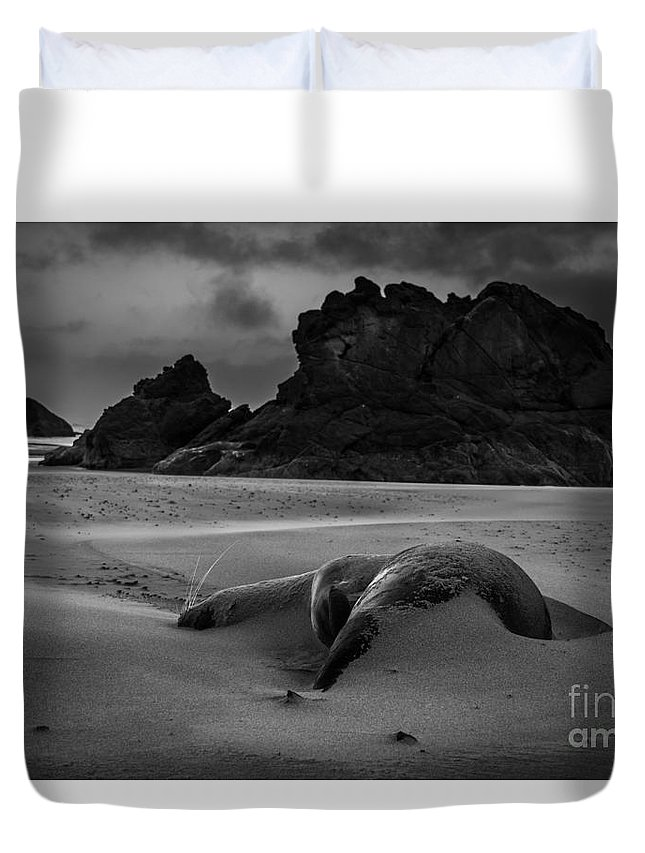 Landscape Duvet Cover featuring the photograph Uncertain Future by Tina Warlick