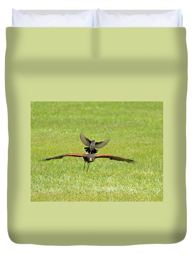 Raptor Duvet Cover featuring the photograph Under Attack by Erin O'Neal-Morie