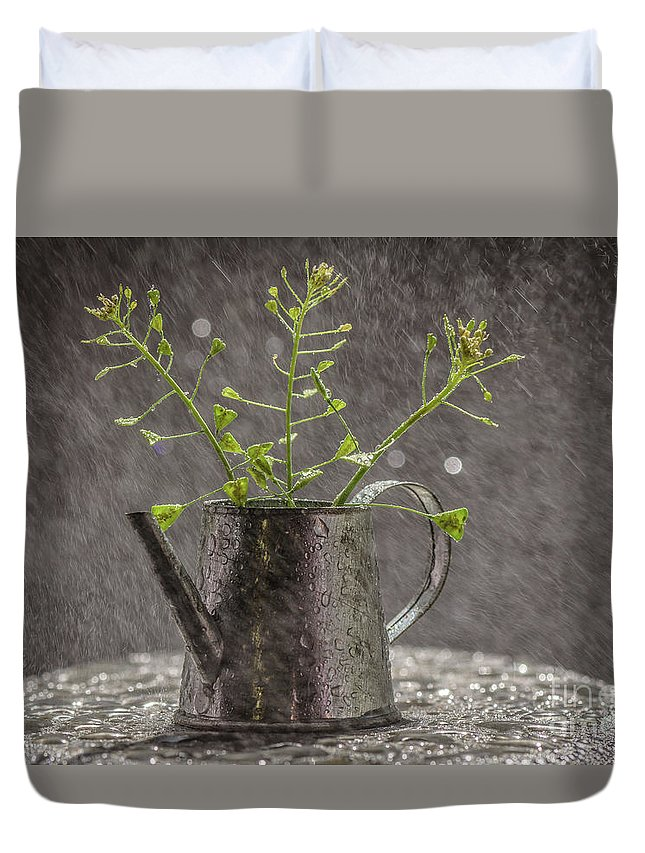 Landscape Duvet Cover featuring the photograph Under The May Rain by Lyudmila Prokopenko