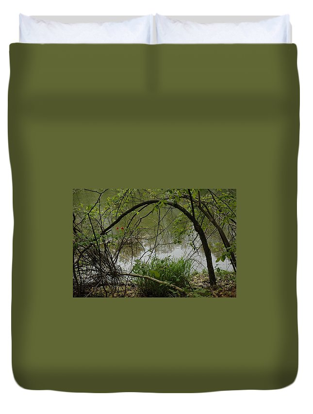 Landscapes Duvet Cover featuring the photograph Under The Wild Wood Arch by LeeAnn McLaneGoetz McLaneGoetzStudioLLCcom