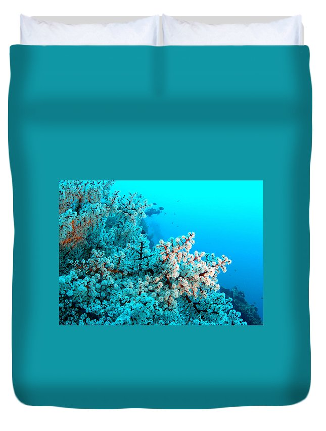 Duvet Cover featuring the photograph Underwater Cherry Blossom by Todd Hummel
