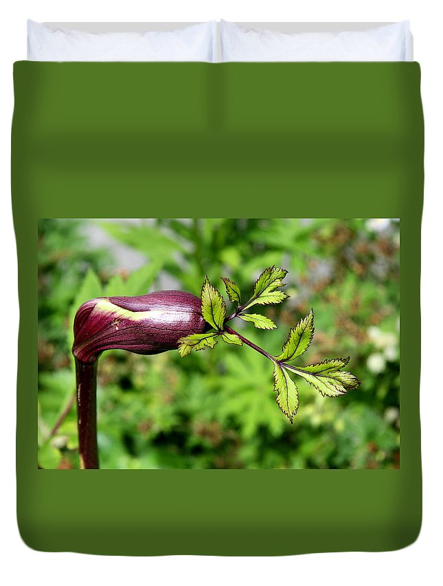 Flower Duvet Cover featuring the photograph Unique Sprout by Christiane Schulze Art And Photography