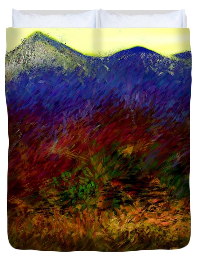 Digital Painting Duvet Cover featuring the digital art Untitled 4-11-10 by David Lane