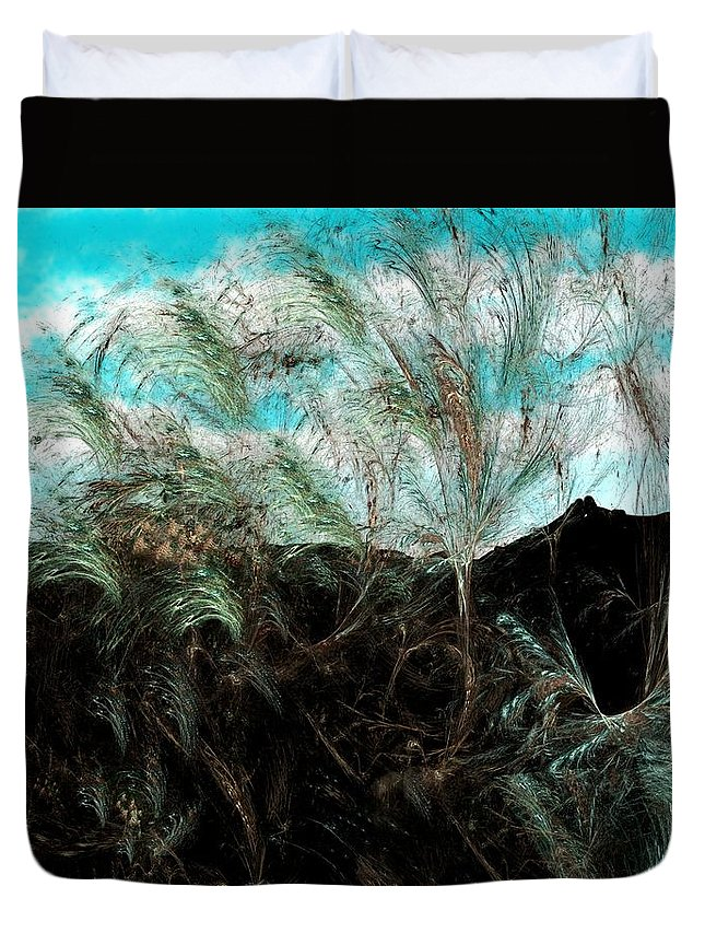 Digital Photograph Duvet Cover featuring the digital art Untitled 9-26-09 by David Lane