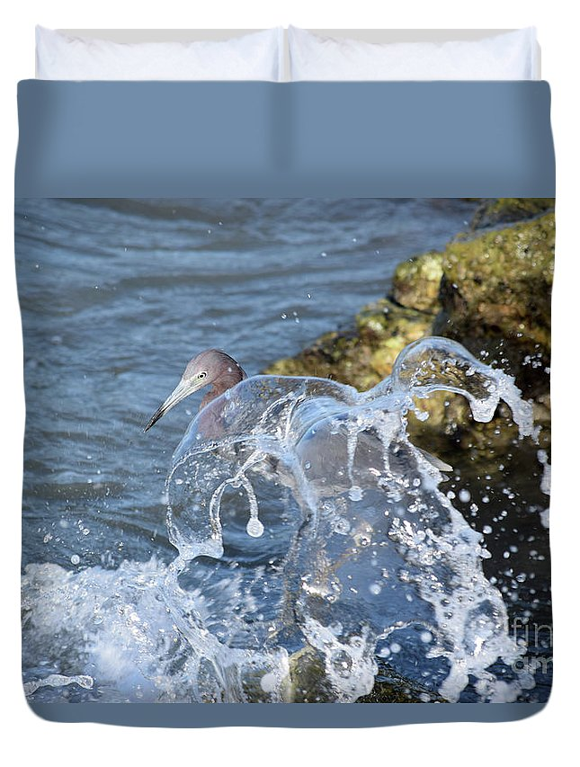 Little Blue Heron Duvet Cover featuring the photograph Unwavering by William Tasker
