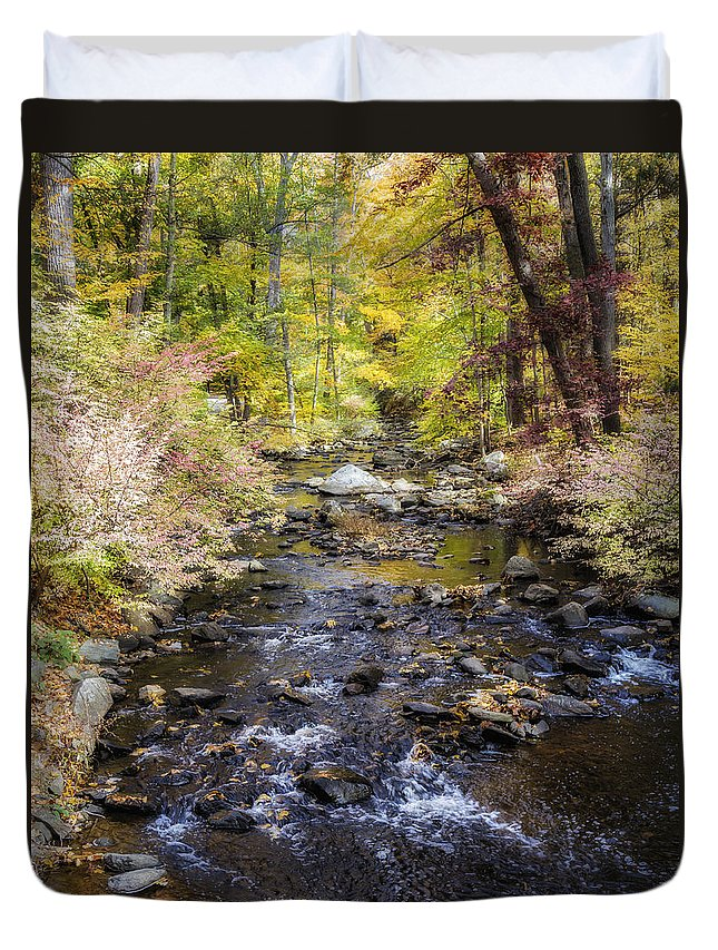 Autumn Duvet Cover featuring the photograph Up The River Gg 5671 by Karen Celella