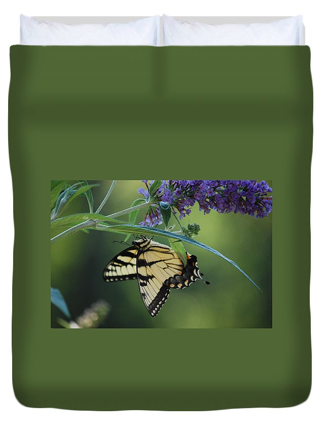 Swallowtail Duvet Cover featuring the photograph Upside Down by Lori Tambakis