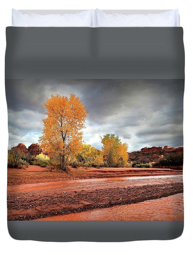 Utah Duvet Cover featuring the photograph Utah Desert Wash by Gary Yost