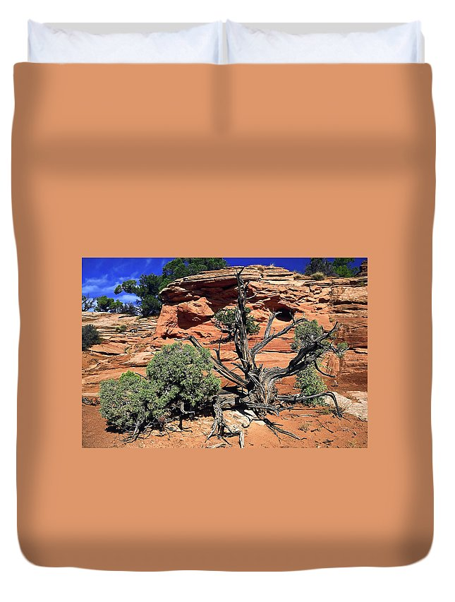 Utah Juniper Tree Duvet Cover featuring the photograph Utah Juniper And Red Rock by Sally Weigand
