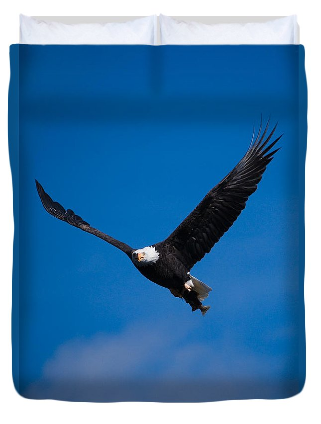 Bald Eagle Duvet Cover featuring the photograph V For Victory by Randall Ingalls