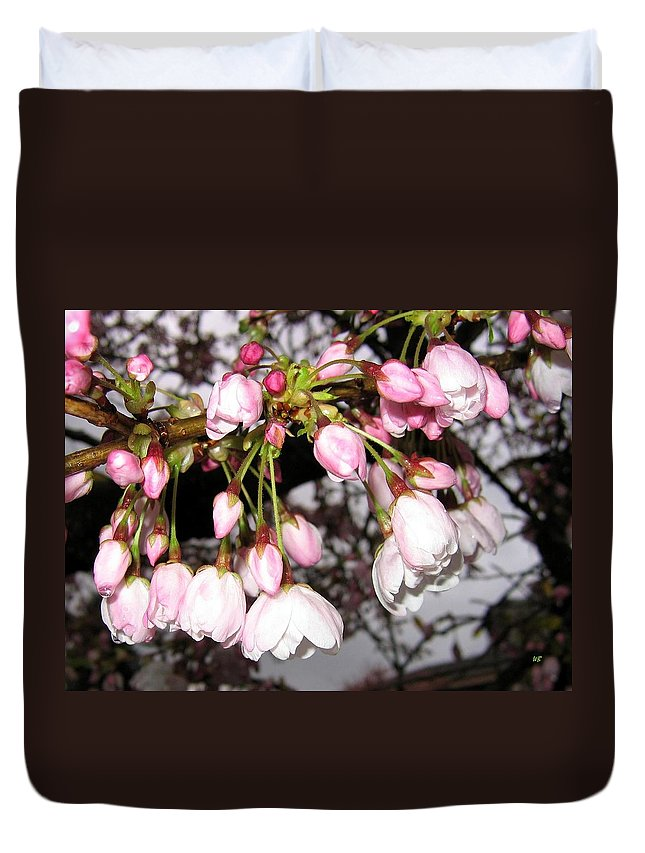 Cherry Blossoms Duvet Cover featuring the photograph Vancouver Cherry Blossoms by Will Borden