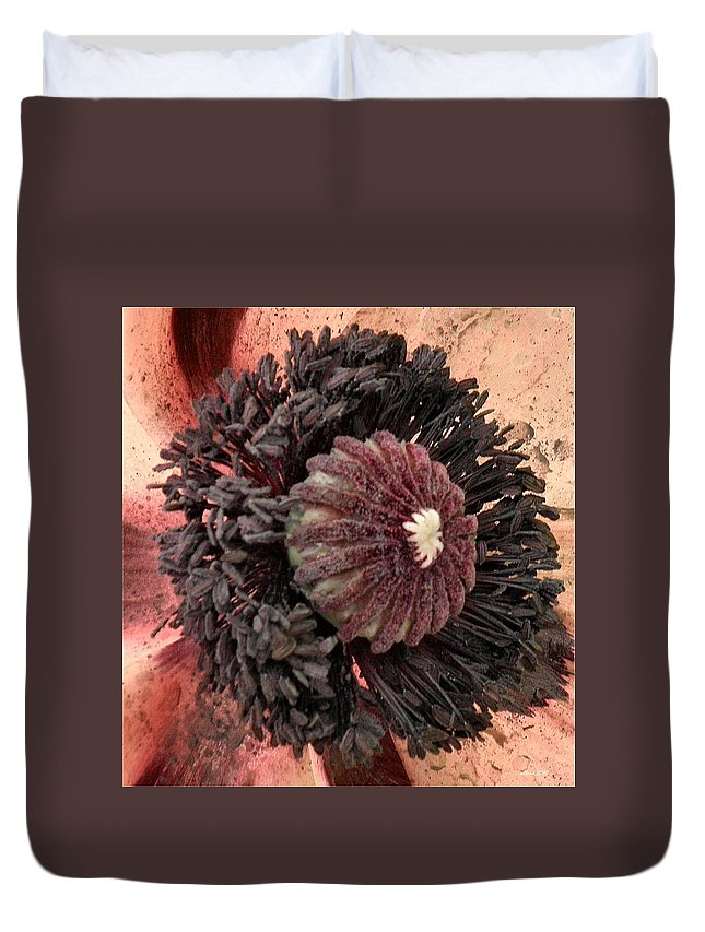 Poppy Duvet Cover featuring the photograph Velvet Core On Pink by T Cook