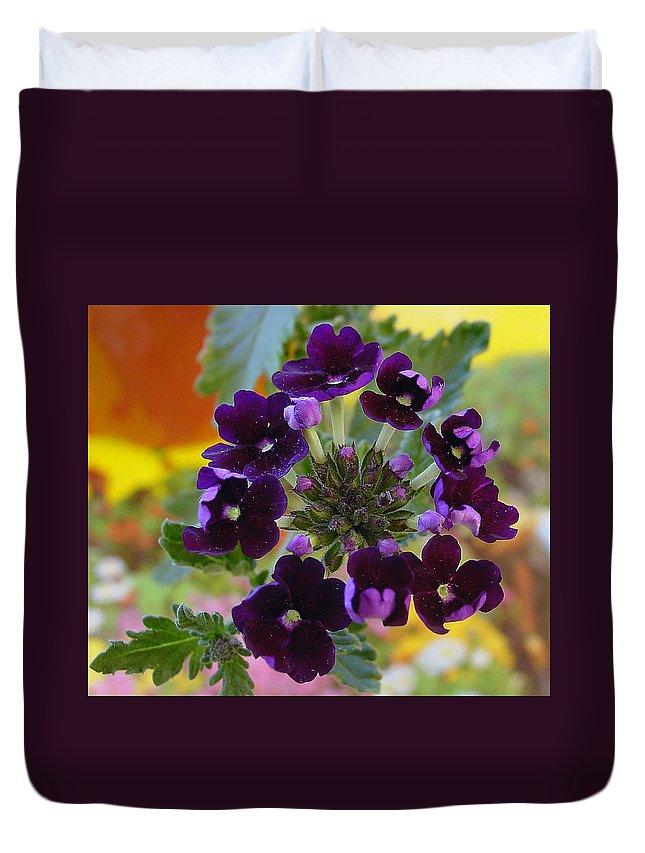 Purple Petals Duvet Cover featuring the photograph Velvet Petals by Kathy Bucari