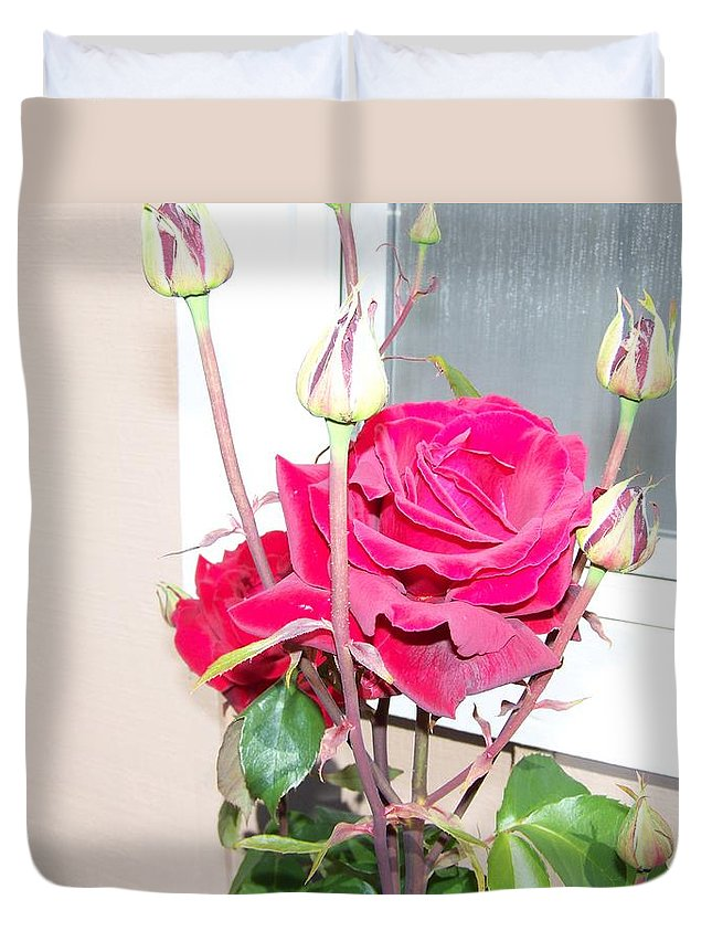 Digital Photography Artwork Duvet Cover featuring the photograph Velvet Red Rose Of Sharon by Laurie Kidd