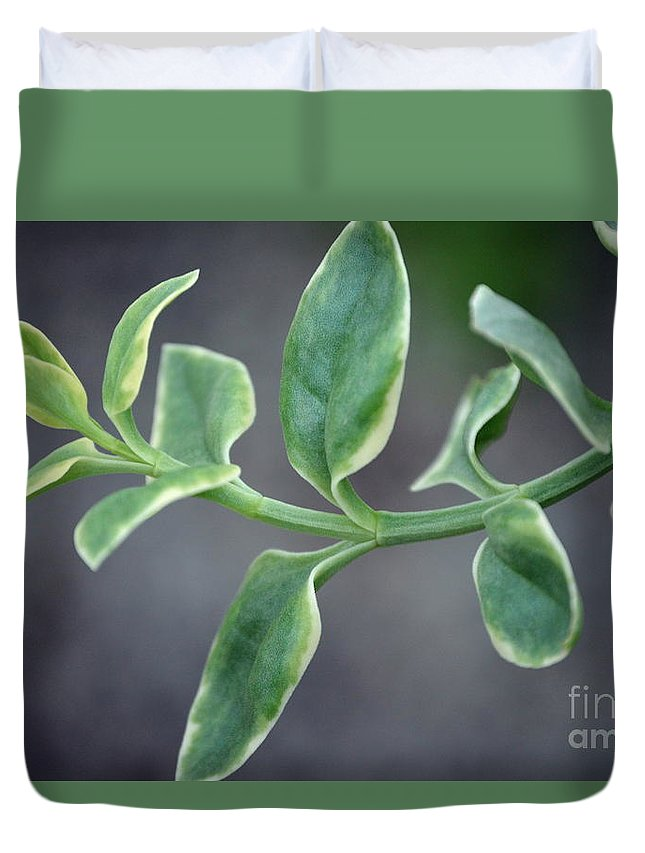 Duvet Cover featuring the photograph Verde by Lenin Caraballo
