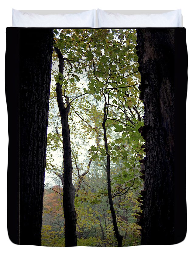 Tree Duvet Cover featuring the photograph Vertical Limits by Randy Oberg