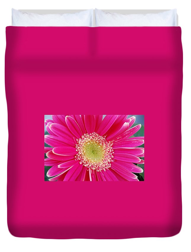 Flower Duvet Cover featuring the photograph Vibrant Pink Gerber Daisy by Amy Fose