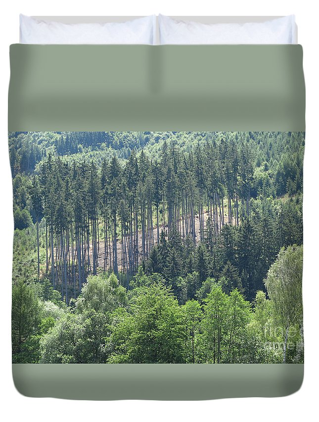 Woods Duvet Cover featuring the photograph View Of The Mixed Forest by Michal Boubin