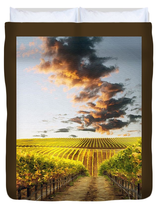 Vineyard Duvet Cover featuring the photograph Vineard Aglow by Sharon Foster