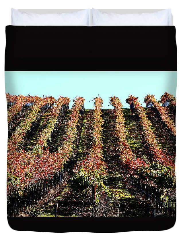 North California Napa Valley Wine Country Duvet Cover featuring the photograph Vineyard 27 by Xueling Zou