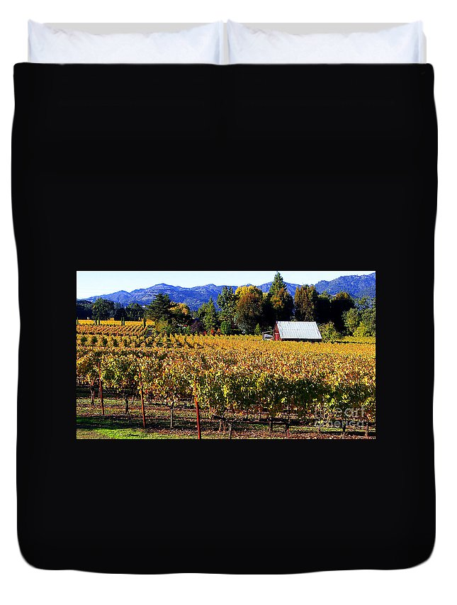 Napa Valley Duvet Cover featuring the photograph Vineyard 4 by Xueling Zou
