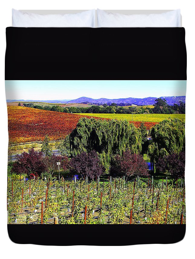 Photograph Duvet Cover featuring the photograph Vineyard 5 by Xueling Zou