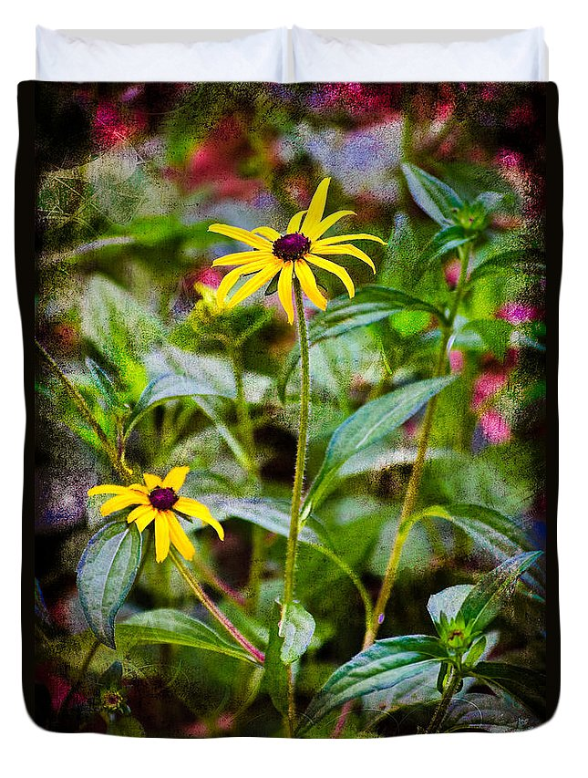 Flower Duvet Cover featuring the photograph Vintage Black-eyed Susans by Rich Leighton