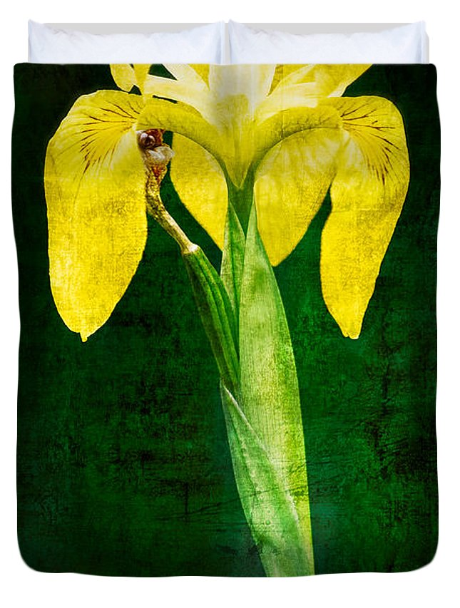 Vintage Duvet Cover featuring the photograph Vintage Canna Lily by Rich Leighton