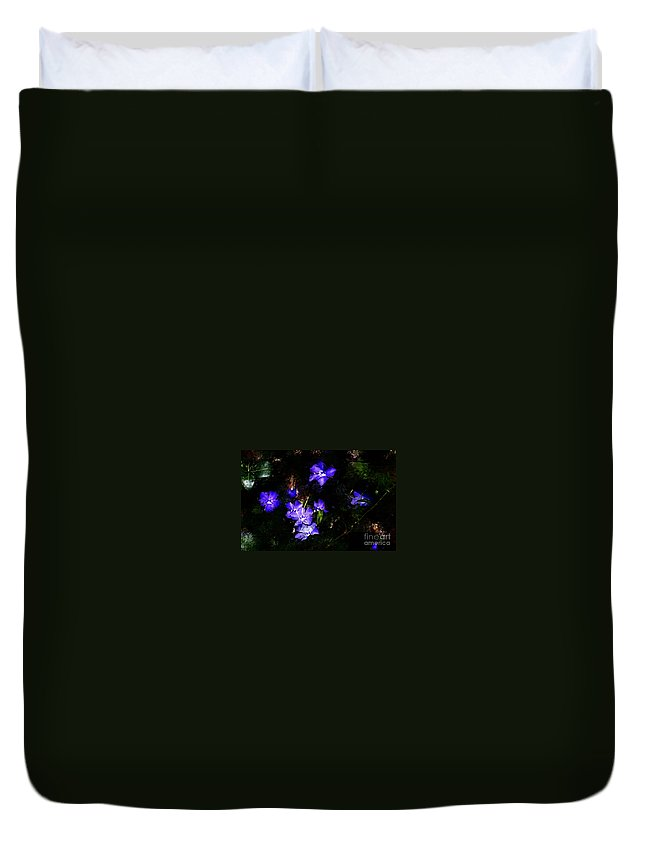 Spring Duvet Cover featuring the photograph Violet by David Lane