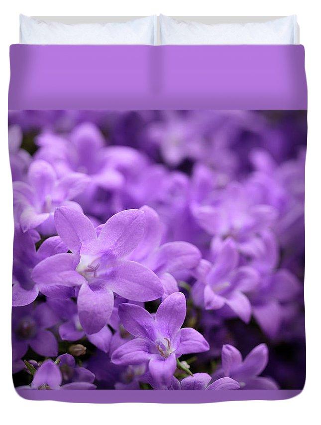 Horizontal Duvet Cover featuring the photograph Violet Dream V by Stefania Levi
