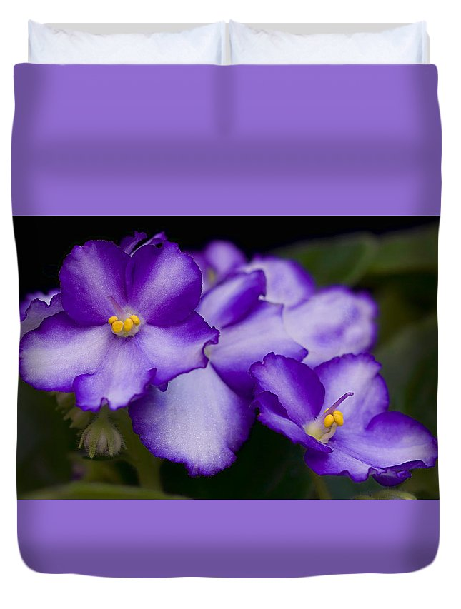 Violet Duvet Cover featuring the photograph Violet Dreams by William Jobes