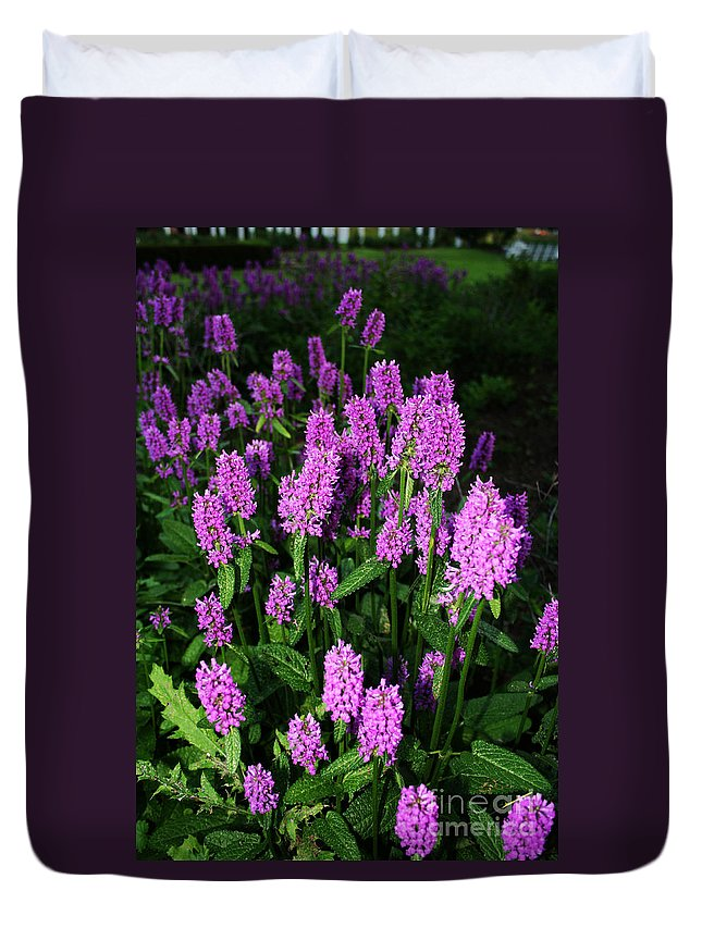 Duvet Cover featuring the photograph Violet by Jamie Lynn