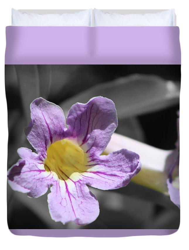 Violet Trumpet Vine Duvet Cover featuring the photograph Violet Trumpet Vine Selective Color by Colleen Cornelius