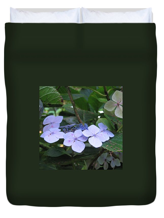 Violets Duvet Cover featuring the photograph Violets O The Green by Kelly Mezzapelle