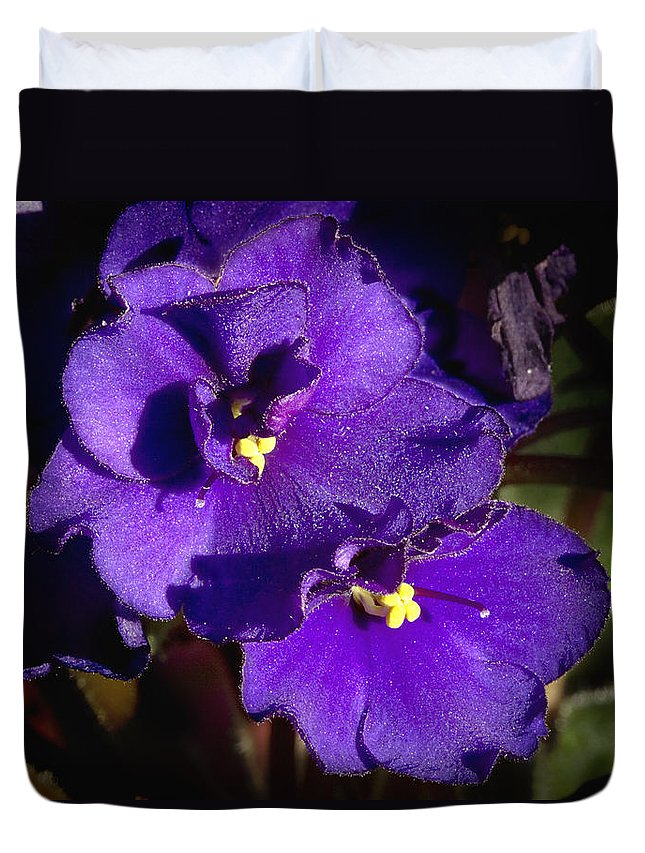 Flowers Duvet Cover featuring the photograph Violets by Phyllis Denton