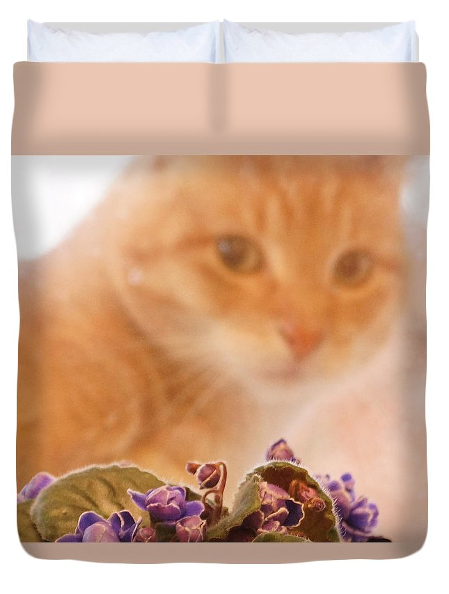 Orange Tabby Cat Duvet Cover featuring the digital art Violets with Cat by Jana Russon
