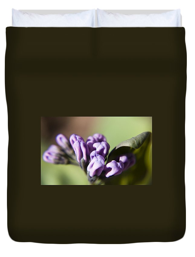 Virginia Duvet Cover featuring the photograph Virginia Bluebell Buds by Teresa Mucha
