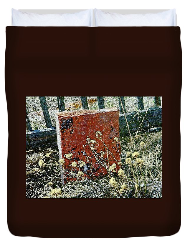 Abstract Duvet Cover featuring the photograph Virginia Dale - The Handwriting On The Red Stone by Lenore Senior