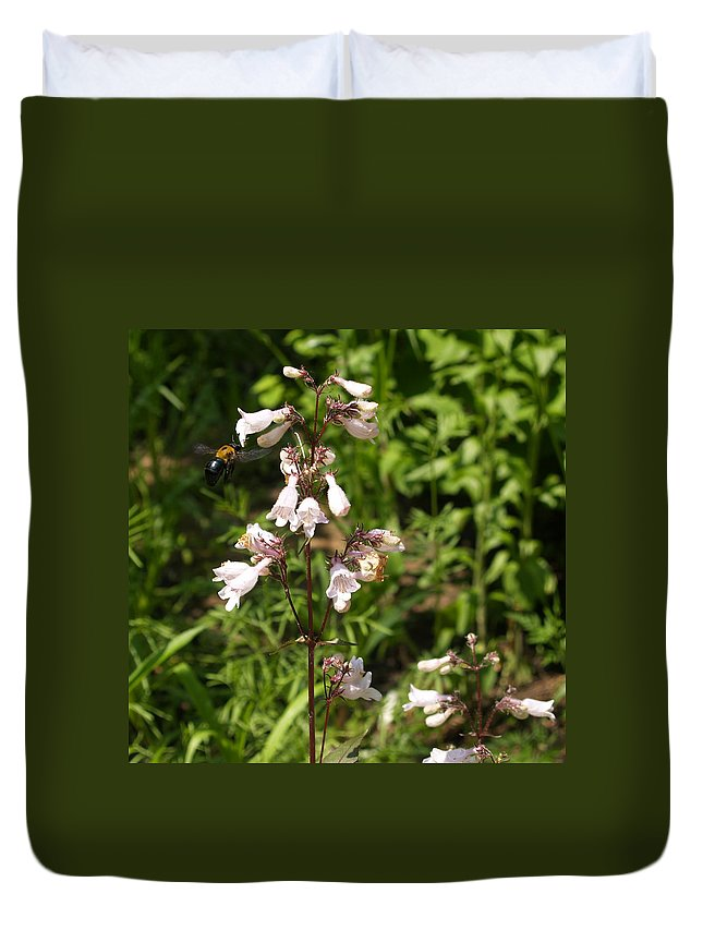 Bumblebee Duvet Cover featuring the photograph Visitor by Adams Art Photography