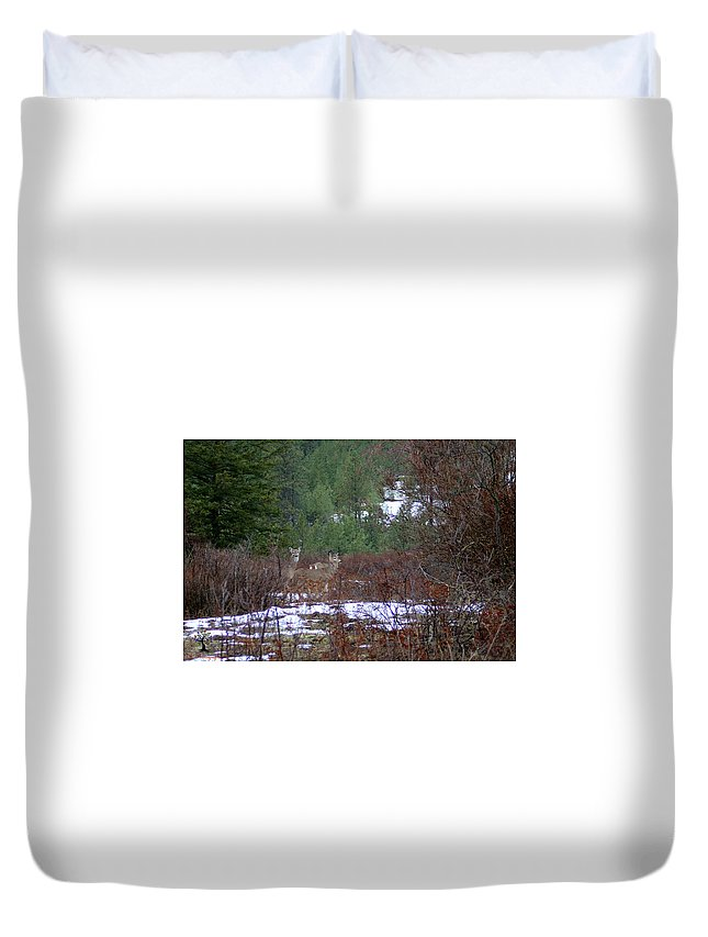 Landscape Duvet Cover featuring the photograph Visitors by Gralyn Haller