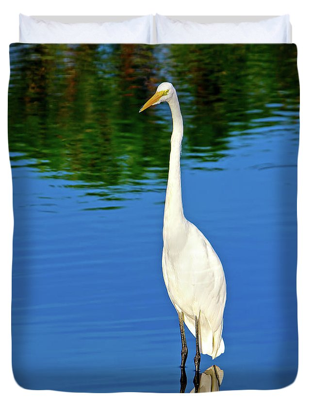Great White Egret Duvet Cover featuring the photograph Wading Great White Egret by Mark Andrew Thomas