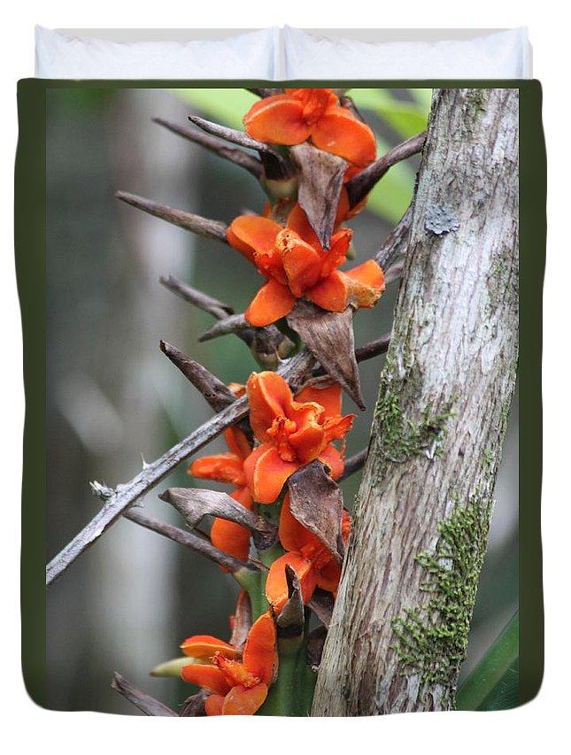 Kauai Duvet Cover featuring the photograph Waimea Flowers by Lauri Novak