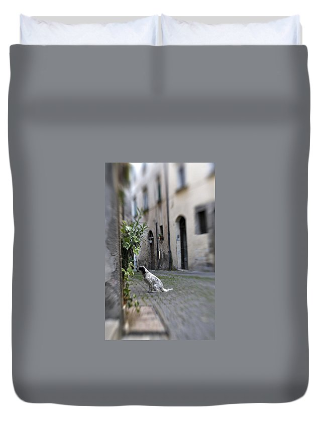 Dog Duvet Cover featuring the photograph Waiting by Marilyn Hunt