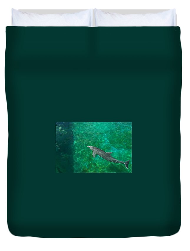 Dolphin Duvet Cover featuring the photograph Waiting Porpoise by Ronald Lake