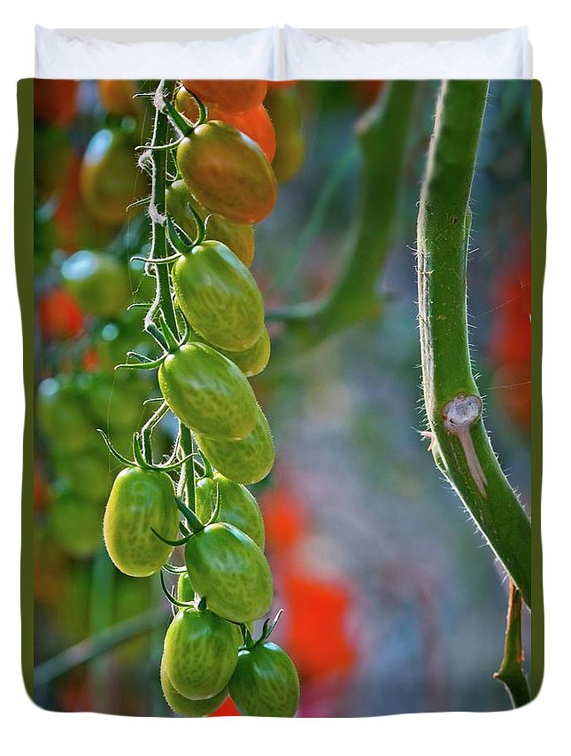Tomatoes Duvet Cover featuring the photograph Waiting To Be Devoured by Linda Unger