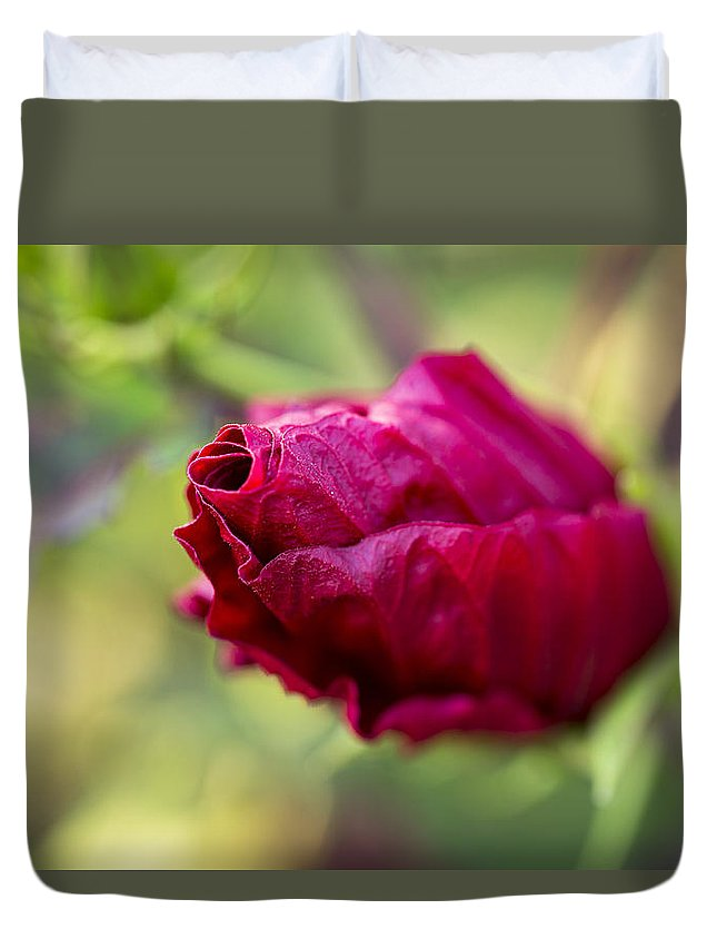 Flower Duvet Cover featuring the photograph Waiting To Bloom by Andrea Kappler