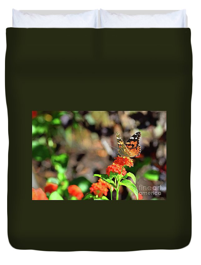Fall Duvet Cover featuring the photograph Warm Fall Day by Igor Aleynikov