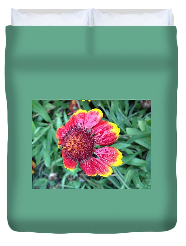 Flower Duvet Cover featuring the photograph Warning Dew by Tim Verplank
