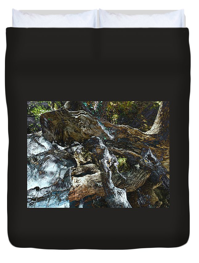 Trees Duvet Cover featuring the photograph Washed Away by Kelly Jade King