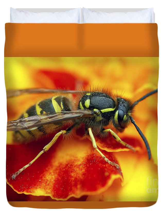 Insect Duvet Cover featuring the photograph Wasp In The Bloom by Michal Boubin